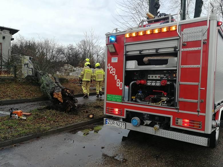 Silne porywy wiatru w powiecie kołobrzeskim, którym towarzyszył deszcz powaliły kilka drzew. W Charzynie drzewo upadło na samochód. Strażacy interweniują