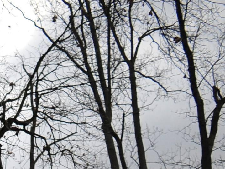 Pogoda na wtorek, 3 grudnia. Pochmurno, ale z przejaśnieniami