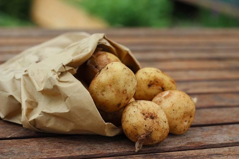 Zastosowanie ziemniaka