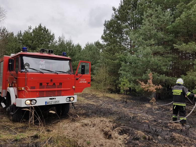 Na terenie powiatu szydłowieckiego dochodzi do wielu pożarów, które często są wywołane przez podpalaczy.