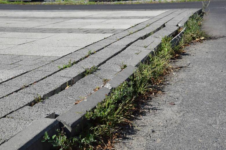 Przeszliśmy się ulicą Bohaterów Westerplatte w Zielonej Górze. Jak oceniacie ją 3 lata po remoncie?
