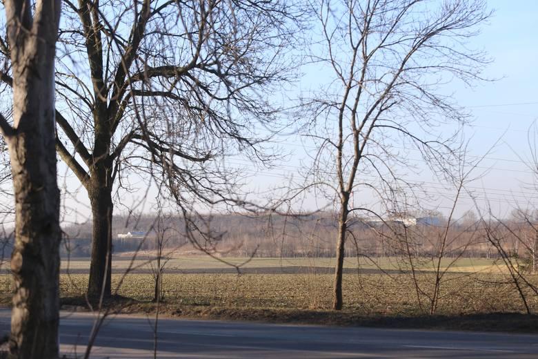 To na tym terenie powstanie nowe osiedle mieszkaniowe w Maciejkowicach