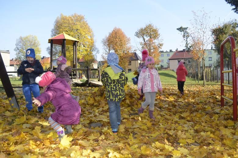 Jeden z wniosków dotyczy budowy interaktywnego placu zabaw przy przedszkolu nr 6. O tym, czy będzie zrealizowany, zdecydują mieszkańcy podczas głoso