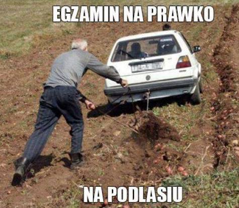 Najnowsze memy o Podlasiu. Zobacz memy podlaskie i memu o Podlasianach przygotowane przez Nienormalny Białystok