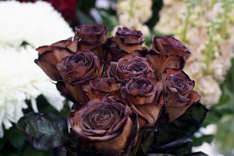 Ogrodnicy chcą sprostać tym wymaganiom i tworzą kwiaty farbowane. Wśród kwiatów naturalnych brązów jest mało.