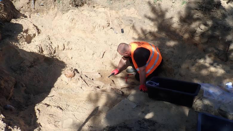 Od 6 maja trwa kolejny etap prac poszukiwawczych w okolicy cmentarza prawosławnego w Białymstoku. Odnaleziono  szczątki czterech osób oraz luźne szczątki nieznanej liczby osób