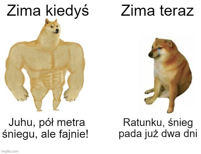 Najlepsze memy o zimie, czyli atak zimy na wesoło w oczach internautów