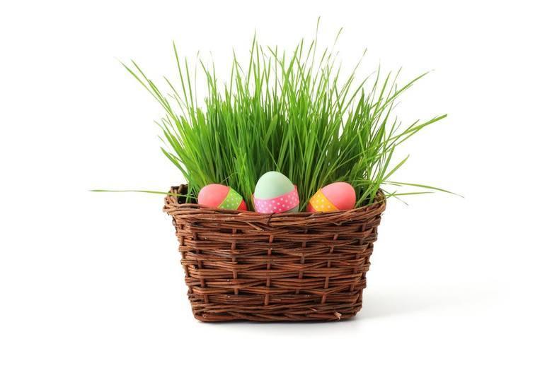 Ile Polacy wydadzą w 2018 roku na Wielkanoc?
