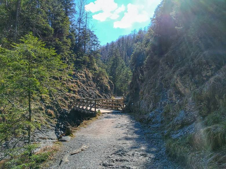 Tatry. Zobacz jak wygląda Dolina Białego. Tam można legalnie spacerować [ZDJĘCIA]