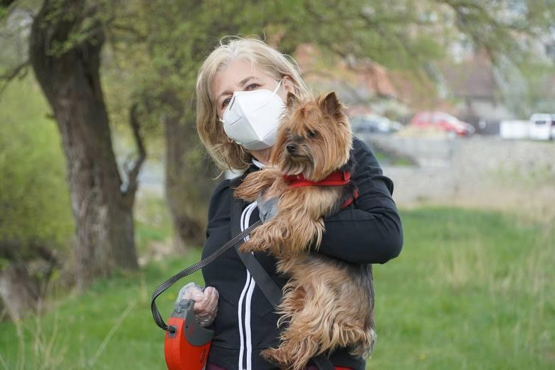 Czy pies może zarazić się koronawirusem?