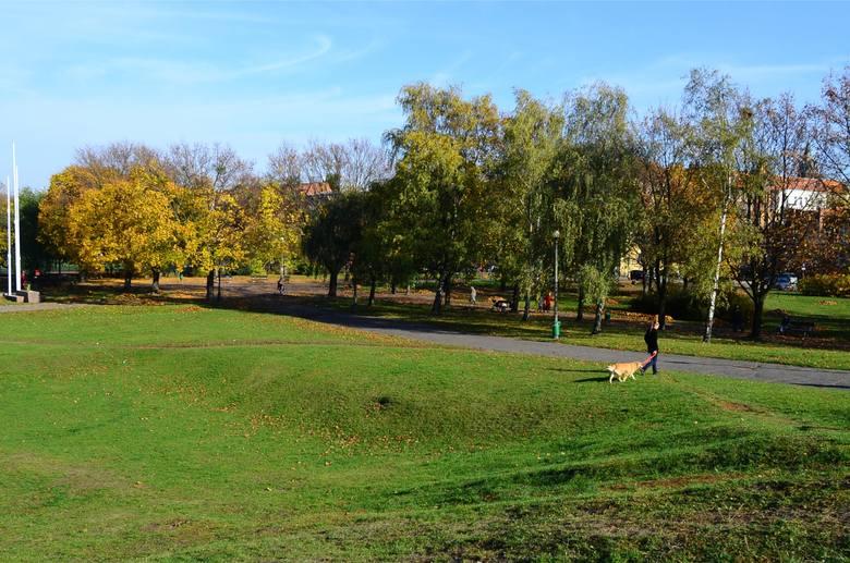 Park przy Arenie i stadion AZS w Poznaniu ocalone. Będzie zieleń!
