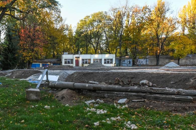 Poznań: Ogród Jordanowski przy Solnej przetrwał plany podzielenia. Teraz ma szansę stać się jednym z najpiękniejszych placów zabaw
