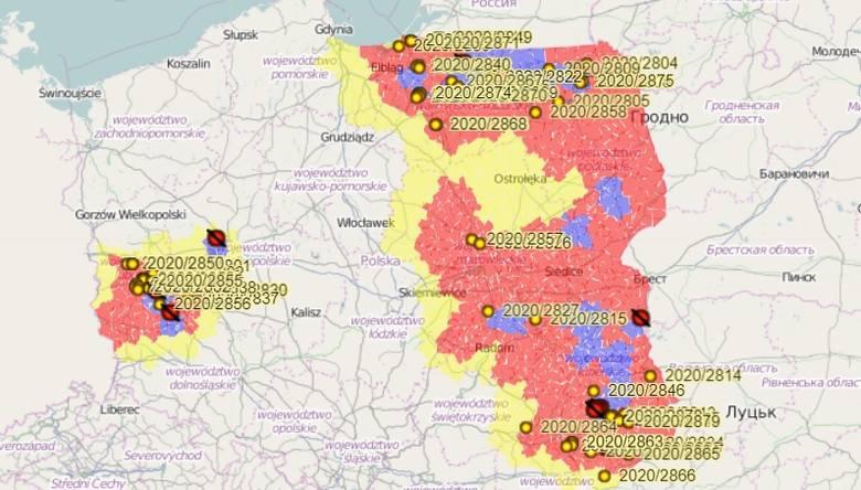 Mapa ASF w Polsce - ogniska u świń i przypadki u dzików