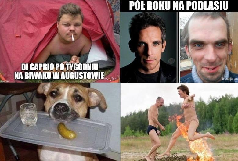 Internet wciąż żartuje sobie z Podlasia, wiele memów jest niesmacznych czy po prostu głupich, ale nie brakuje też udanych.  Memy to tylko śmieszne obrazki