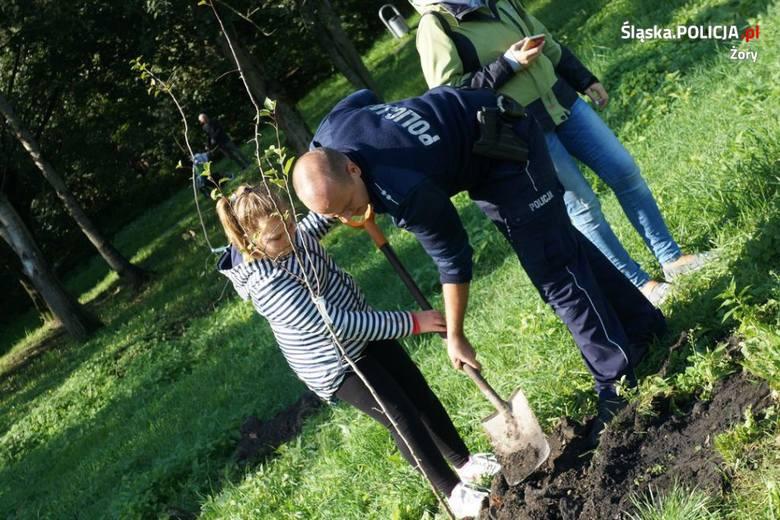 Ponad 100 osób sadziło drzewa w Parku Cegielnia w Żorach
