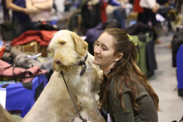 Międzynarodowa wystawa psów rasowych w Sosnowcu. Możemy podziwiać setki ras psów ZDJĘCIA