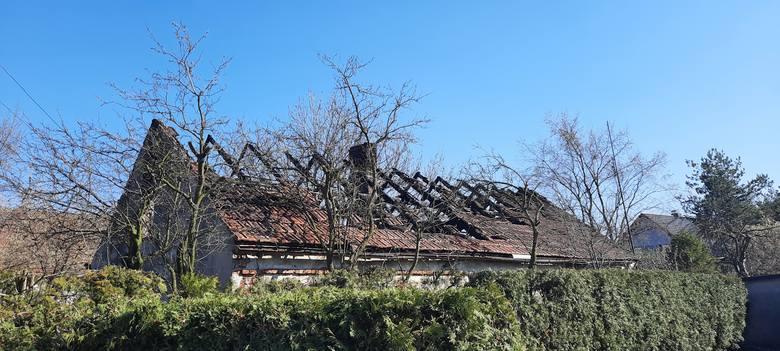 Ogień w stuletnim domu przy ul. Środkowej w Opolu wybuchł pod koniec marca. Anita i Bogdan Stępniowie szykowali się już do snu. Pan Bogdan próbował ratować dobytek, co niemal przypłacił życiem. Małżonkowie uciekli z płomieni tak jak stali, zabierając jedynie swoją przyjaciółkę - kundelkę o...