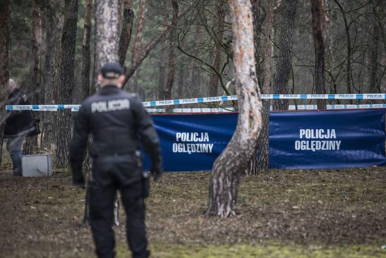 Prokuratura zakłada, że kości znalezione w wigilię w lasku w Brodnicy należą do zaginionego 21-letniego Mateusza Bogackiego. Wszczęła śledztwo w kierunku