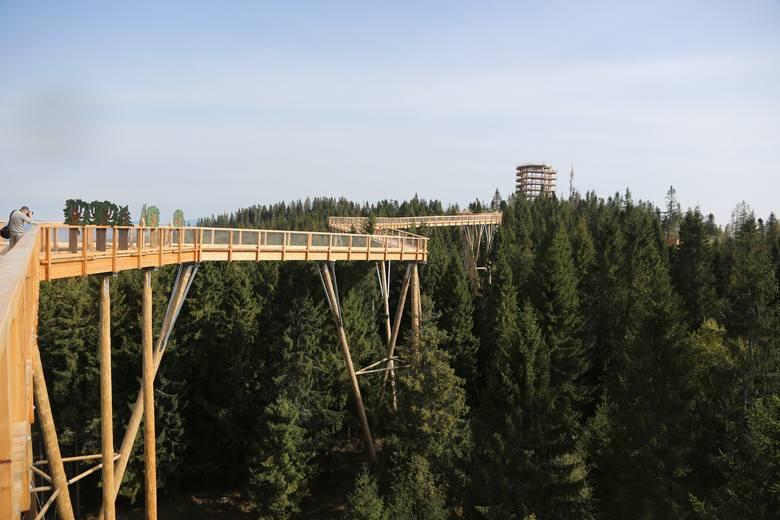 Słowacja: Ścieżka w koronach drzew została otwarta