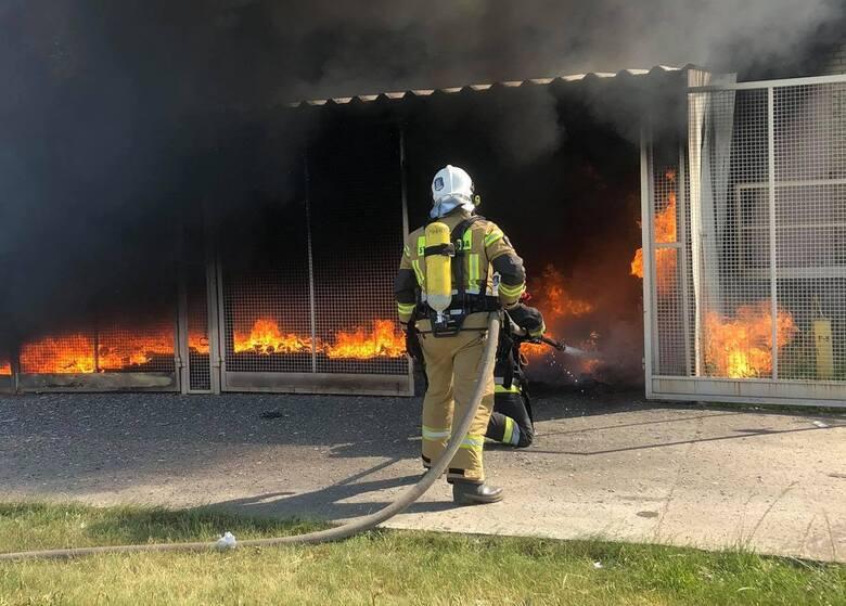 Pożar na terenie zakładu w Gorzycach. Co się wydarzyło? (ZDJĘCIA)