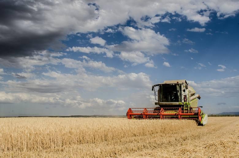 Te kombajny pomogą Ci przy niejednych żniwach. Zobacz maszyny rolnicze, za które zapłacisz nie więcej niż 20 tys. zł