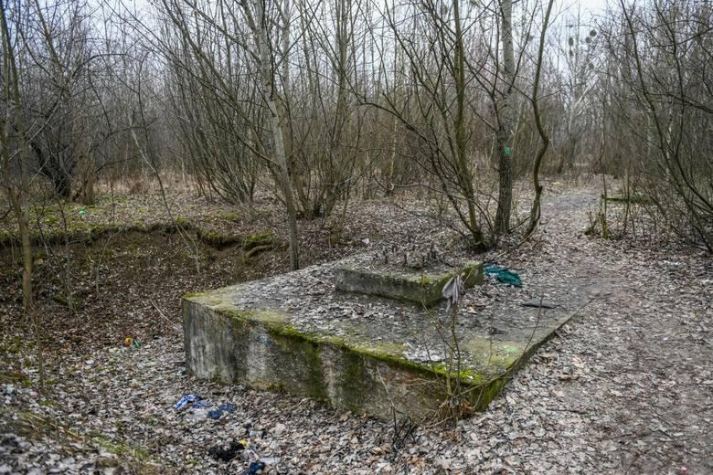 Kryta pływalnia w parku Kasprowicza powstanie w miejscu, gdzie niegdyś miało być zbudowane lodowisko<br />