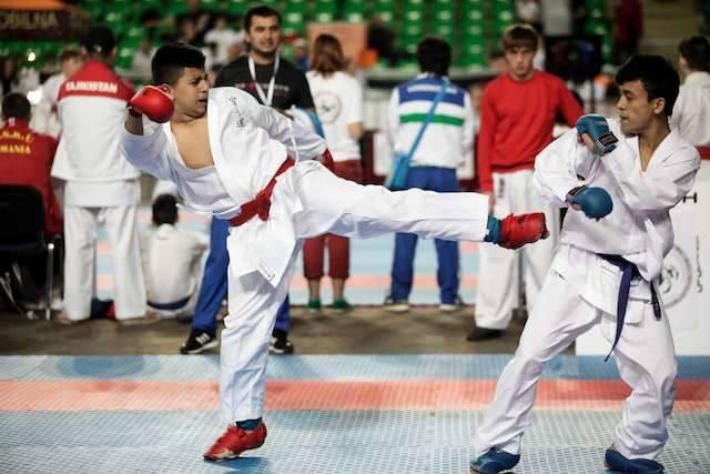 VII Mistrzostwa Świata w Karate ShotokanVII Mistrzostwa Świata w Karate Shotokan