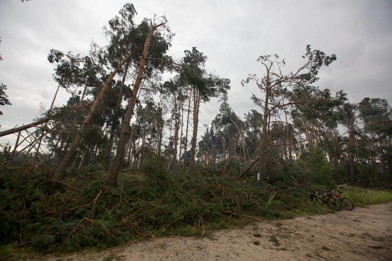 Powiat chojnicki po kataklizmie