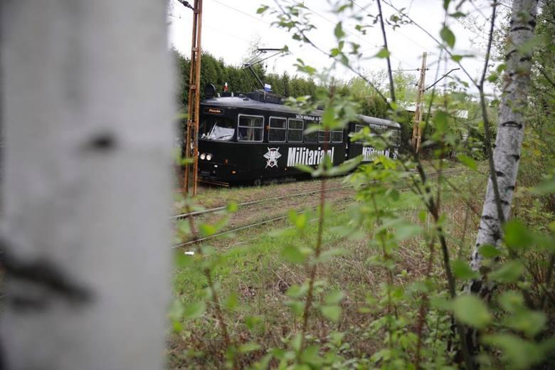 Najbardziej zielone zakątki na trasach tramwajów w Nowej Hucie [GALERIA]
