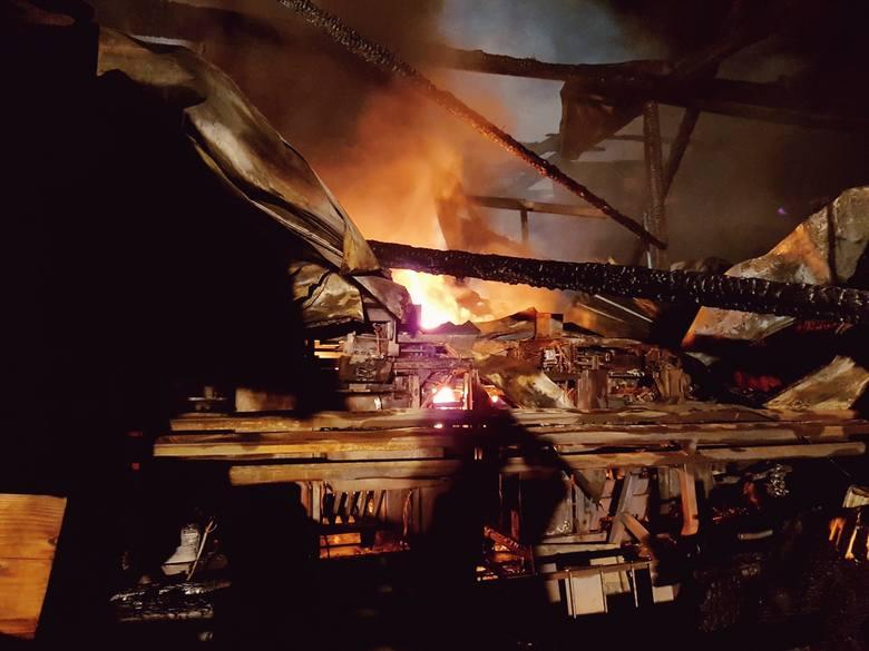 Żmiąca. Pożar w zakładzie przetwórstwa owocowego. Straty ponad milion złotych [ZDJĘCIA]