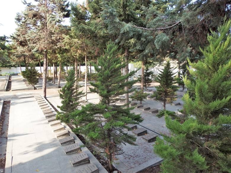 Na cmentarzu w Anzali