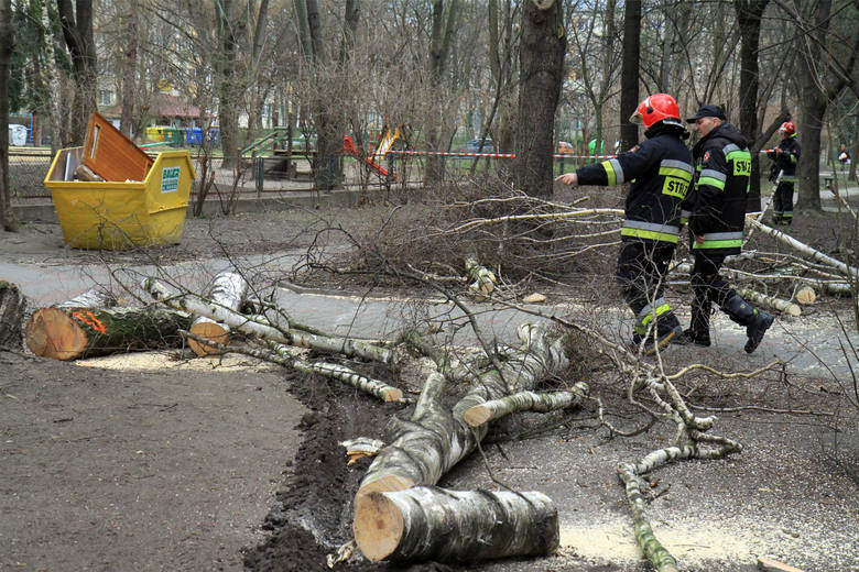 Małopolska. Strażacy walczą ze skutkami wichury