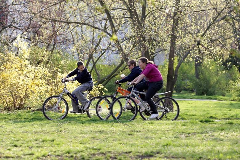 Gdzie jechać na rower? Warszawa i Mazowsze - trasy rowerowe dla początkujących i średniozaawansowanych