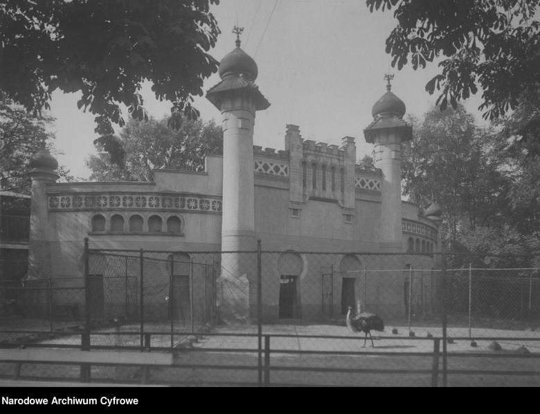 Początki zoo w Poznaniu sięgają 1871 roku. Jednak oficjalnie Towarzystwo Akcyjne Ogród Zoologiczny zostało założone dopiero trzy lata później. Po odzyskaniu