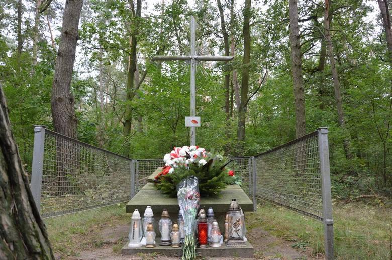 Uczcili pamięć zamordowanych w lesie zwierzynieckim [ZDJĘCIA]