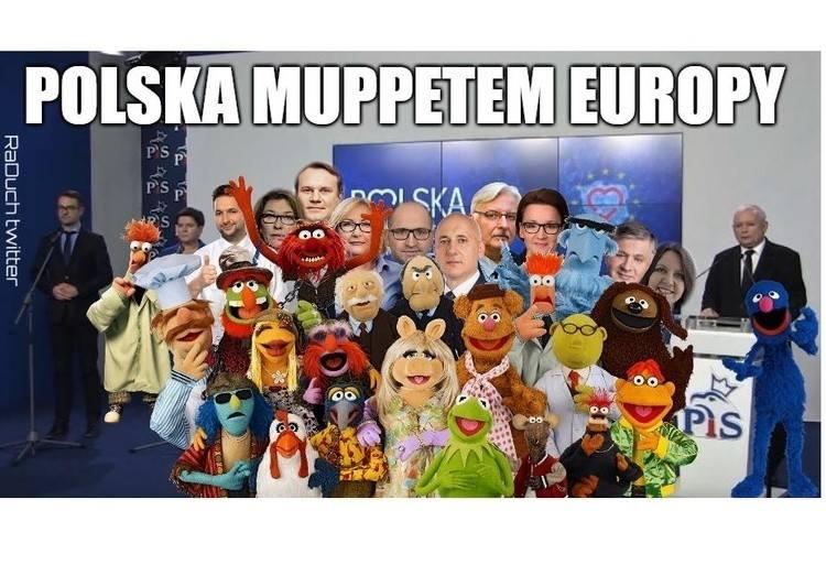 """Wyniki wyborów do Europarlamentu 2019 MEMY. """"Polska muppetem Europy""""? Tak internauci komentują eurowybory w Polsce 1.6.2019"""