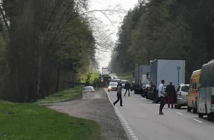 Na trasie odcinku Straż - Czarna Białostocka powstał duży korek. Drogę krajową nr 19 zablokowało drzewo, które spadło na jezdnię.Zdjęcia pochodzą z grupy