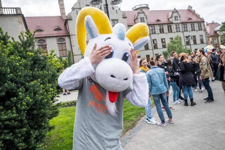 Oto 21 najgorzej opłacanych kierunków studiów w Poznaniu. Po ich ukończeniu zarabia się najmniej. Ranking stworzyliśmy na podstawie Ogólnopolskiego systemu