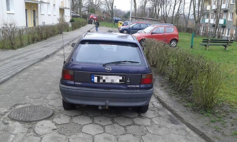 Autodrań zaparkował przy ul. Morelowej w Zielonej Górze