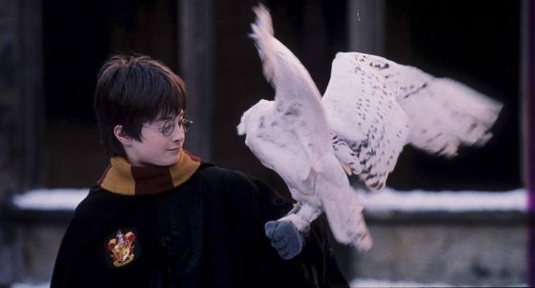 Cały świat szaleje na punkcie Harry'ego Pottera już od 20 lat
