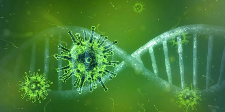 5 nowych zakażeń koronawirusem w Świętokrzyskiem. Zobacz skąd [LISTA]