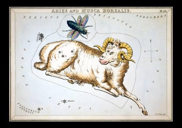 Horoskop miesięczny dla Barana. Sprawdź, co przygotowały dla Ciebie gwiazdy