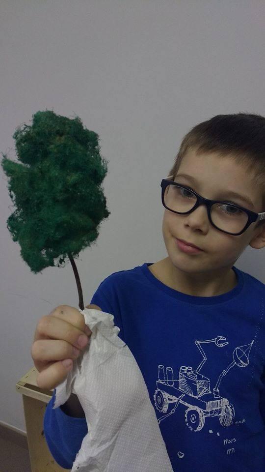 Sam robi drzewka na makietę. Jest to jego hobby, więc rodzice nie wystawiają ich na licytację.