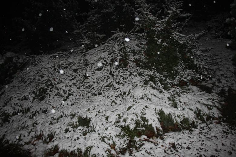 pierwszy śnieg w zielonej górze, pierwszy śnieg 2016
