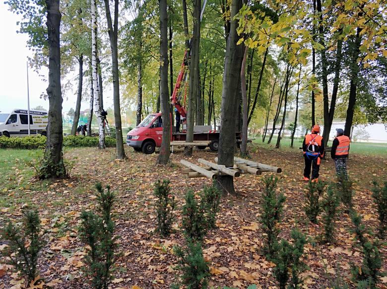 Trwa budowa bezobsługowego parku linowego w Szydłowcu. Gmina na ten cel pozyskała pieniądze z budżetu województwa mazowieckiego w wysokości 80 tysięcy