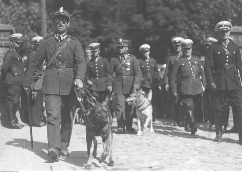 Weterani i ich psy witani w Warszawie