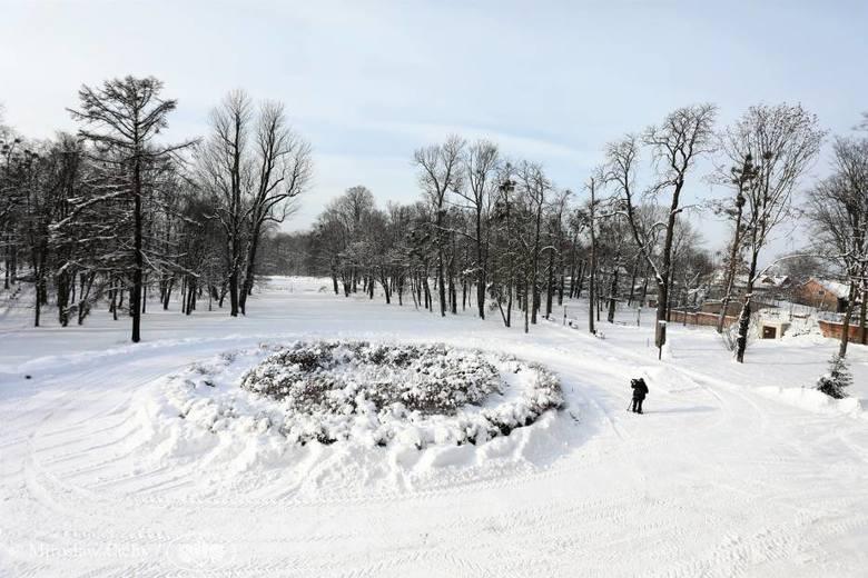 Park w Koszęcinie jeszcze bardziej wypięknieje