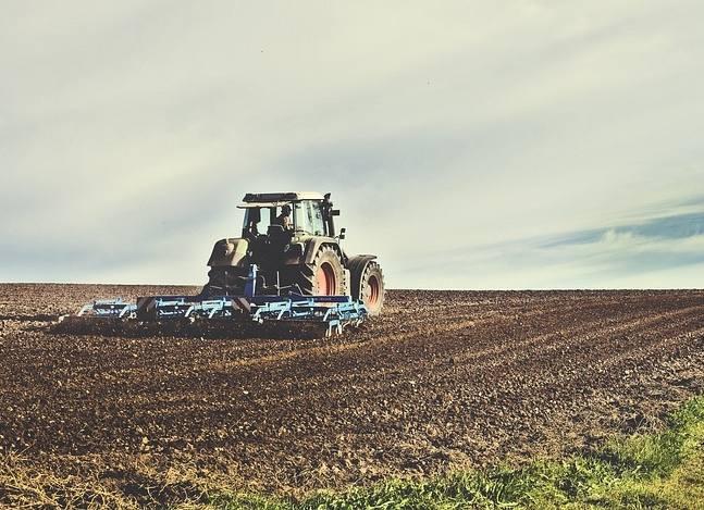 """""""Dno i wodorosty"""". Rolnicy ostro o opłacalności produkcji - komentarze"""