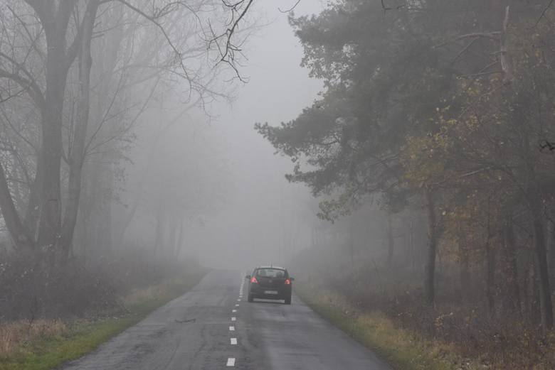 W okresie jesienno-zimowym, gdy na drogach jazdę często utrudniają mgły, wielu kierowców od razu decyduje się użyć przednie i tylne światła przeciwmgłowe.