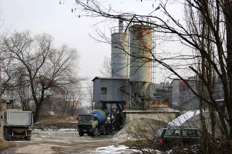 Kraków. Wąż gniewosz namiesza w planach budowy bloków na Zakrzówku?